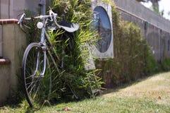 Cykel som klibbas i gräs Arkivbilder
