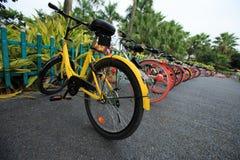 Cykelaktie i porslin royaltyfria bilder