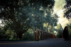Cykelbana över bron fotografering för bildbyråer