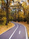 Cykelbana i höstskogen Arkivbild