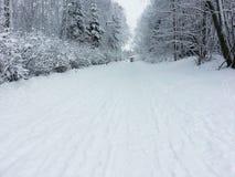 Cykelbana i vinter Arkivbild