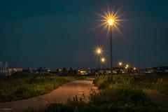 Cykelbana med ljusa lyktor i Holland på natten royaltyfri fotografi