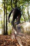 cykelberg Arkivfoton