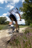 cykelberg Royaltyfri Foto