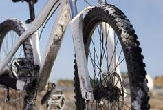 cykelblue över skyvinter Royaltyfri Foto