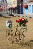 cykelbröllop Arkivbilder