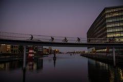 Cykelbro i Köpenhamnhamn denmark arkivbild