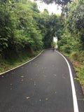 Cykelcirkuleringsvägen Royaltyfria Bilder