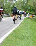 cykelgrupp Royaltyfri Foto