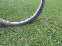 Cykelgummihjul på gräs fotografering för bildbyråer