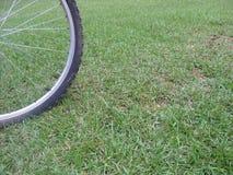 Cykelgummihjul på gräs arkivbilder