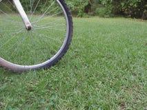 Cykelgummihjul på gräs arkivbild