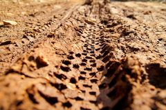 Cykelgummihjulspår på lerig slingaroyalty Gummihjulspår på den våta leriga vägen, abstrakt bakgrund, texturmaterial Arkivbild