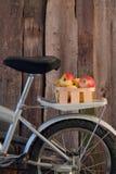 Cykelkorg med äpplen Royaltyfri Foto