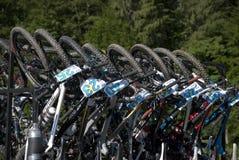 Cykelkugge royaltyfri bild