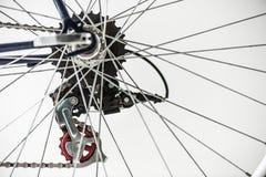 Cykelkugghjul och eker royaltyfria bilder
