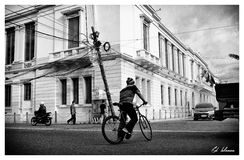 cykelliv Royaltyfri Foto