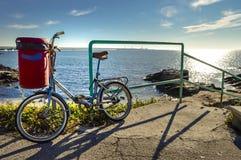 Cykeln Royaltyfria Bilder