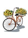 cykeln blommar tappning Arkivfoto