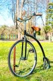 Cykeln för Retro gammal stil i den soliga vårgräsplanen parkerar Fotografering för Bildbyråer