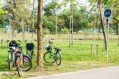 Cykeln i trädgård parkerar på soligt Royaltyfria Bilder