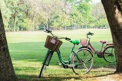 Cykeln i trädgård parkerar på soligt Arkivfoton