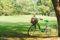 Cykeln i trädgård parkerar på soligt Arkivbilder