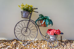 Cykeln med blomkrukor och vaggar Royaltyfri Foto