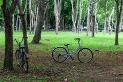 Cykeln parkerar Fotografering för Bildbyråer