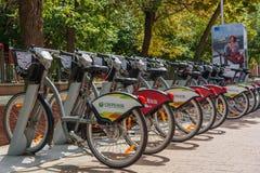 Cykelparkeringen för hyra i sommaren i Moskva Ryssland Fotografering för Bildbyråer
