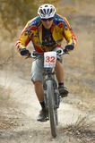 cykelracer Arkivfoton