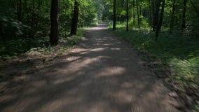 Cykelritter längs den smala banan förbi buskig grön skog arkivfilmer