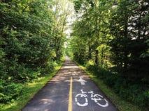 Cykelrittpasserande i skog Royaltyfria Bilder