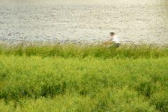 Cykelryttare vid vatten och gräs Arkivfoton