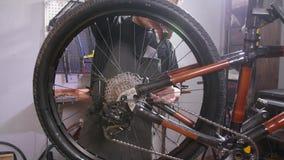 Cykelservicebegrepp En ung man reparerar och underh?ller en cykel i seminariet stock video