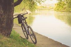 Cykelspåret parkerar nära floden/går in med cykeln nära floden royaltyfri foto