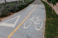 Cykelsymbolet på vägen i parkerar royaltyfria bilder