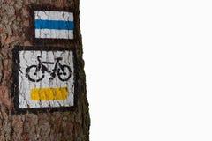 Cykeltrail Fotografering för Bildbyråer