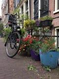 Cykeltur Arkivfoto