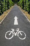 cykelväg Royaltyfri Foto