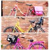 Cykelvattenfärgcollage av 3 cyklar i triptyk Royaltyfri Bild