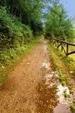 Cykl ścieżka Olona rzeka & x28; Italy& x29; zdjęcie stock