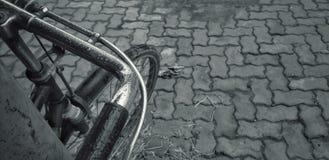 Cykl zdjęcia royalty free