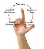 Cykl stres obraz stock