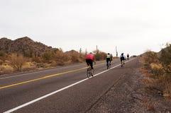 cykla öken Royaltyfria Bilder