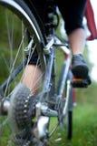 cykla Royaltyfria Foton