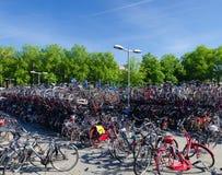 Cykla att parkera Arkivfoton