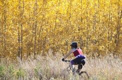 cykla bergkvinna Royaltyfri Foto