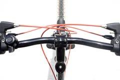 cykla det grunda cykla perspektiv för berg för händer för skogen för fokusen för cyklistdjupfältet Royaltyfria Foton