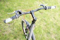 cykla det grunda cykla perspektiv för berg för händer för skogen för fokusen för cyklistdjupfältet Royaltyfri Foto
